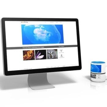 5 Essential Elements Every Business Website Should Have